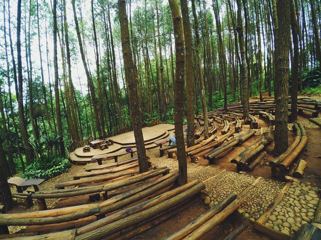 Paket Wisata Jogja - Hutan Pinus Mangunan